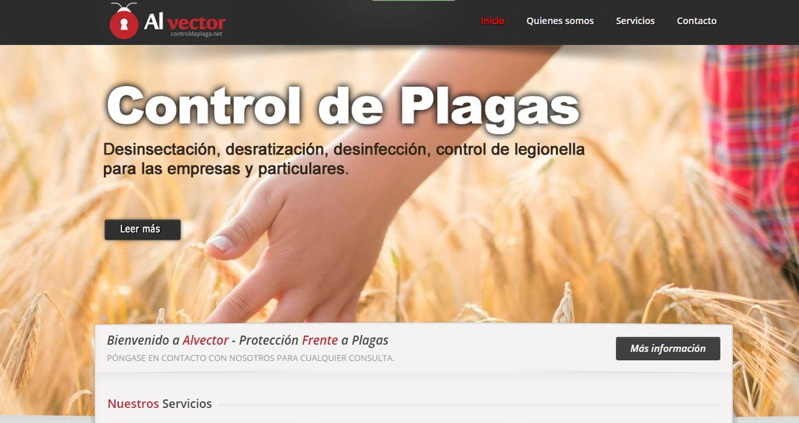 Diseño web Alvector