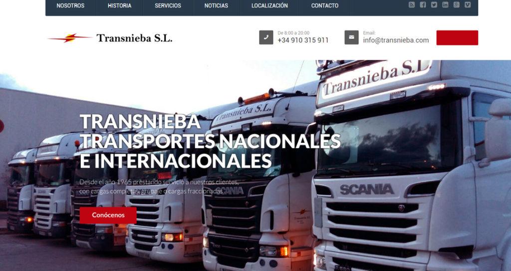 Diseño web Transnieba