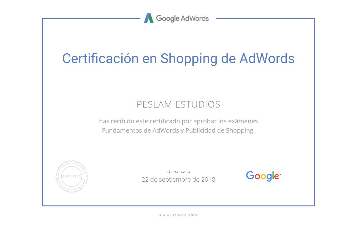 Certificación Shopping de Adwords