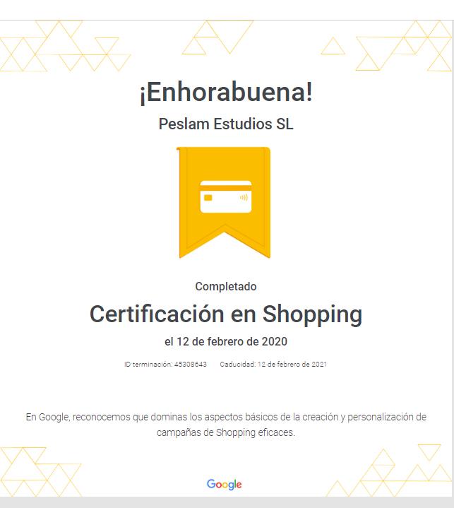 Certificación en Shopping Google.