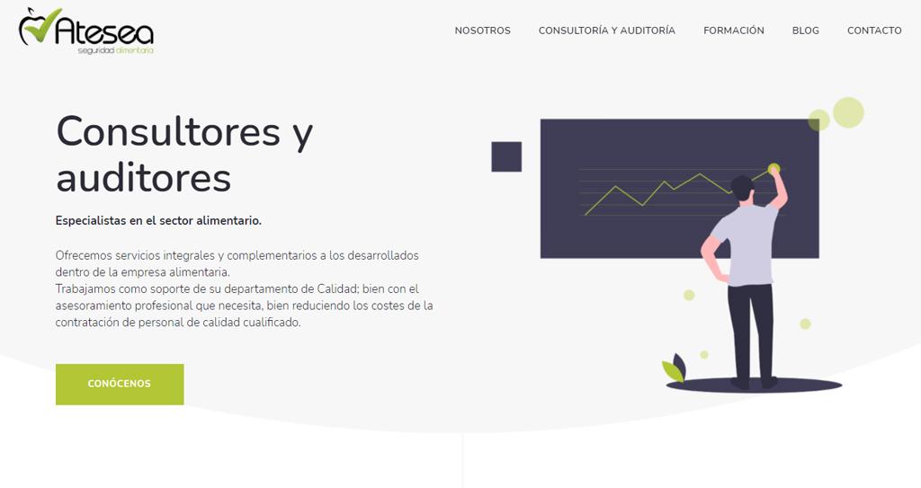 Diseño web Consultores